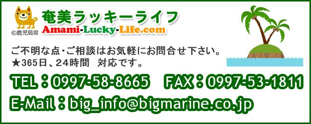 amami-lucky-life